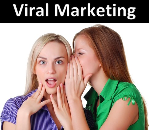 The Evolution of Viral Marketing
