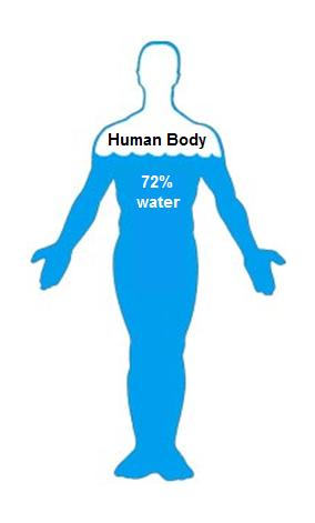 https://vincentstlouis.com/wp-content/uploads/2012/10/human-body-72-water.jpg
